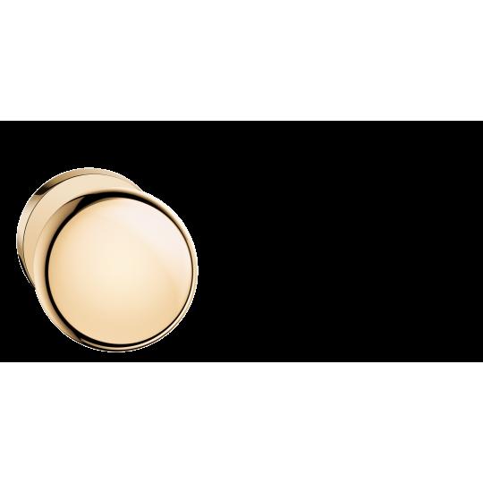 Gałka Orbis R z okrągłym szyldem mosiądz